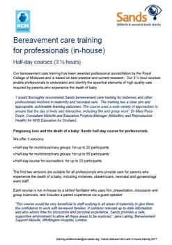 Bereavement, care, training, professionals, half-day, stillbirth, neonatal death, health professionals, midwives, doctors, consultants, counsellor, hospital