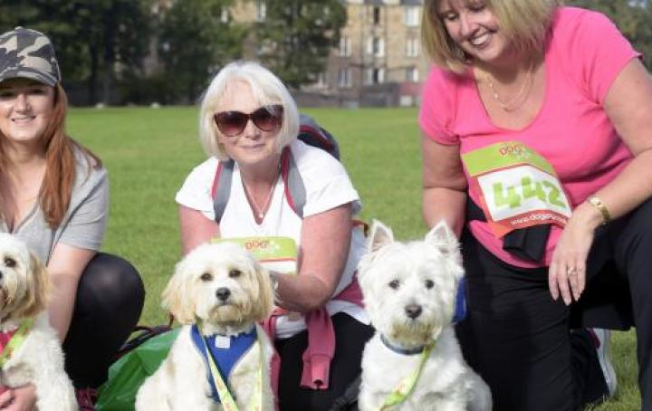 Dog Jog Edinburgh